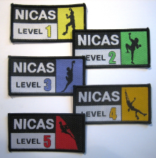 NICAS badges small